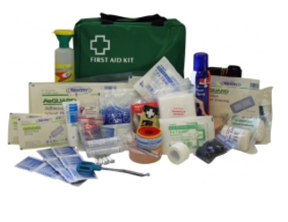 Large sports first aid kit and contents